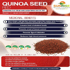 Quinoa Seed Red