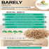 Barely Seeds