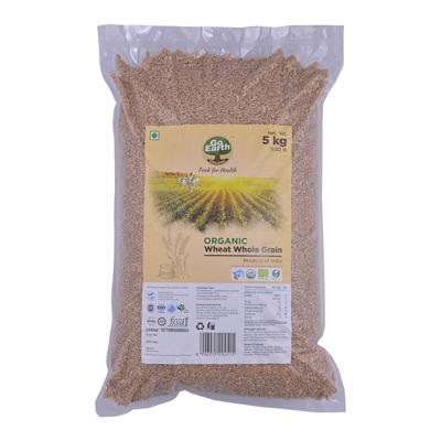 Wheat Whole Grain